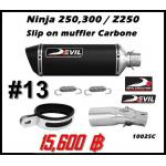ท่อ Kawasaki Ninja250-300/Z250-300 Devil Slip on muffler carbone #13