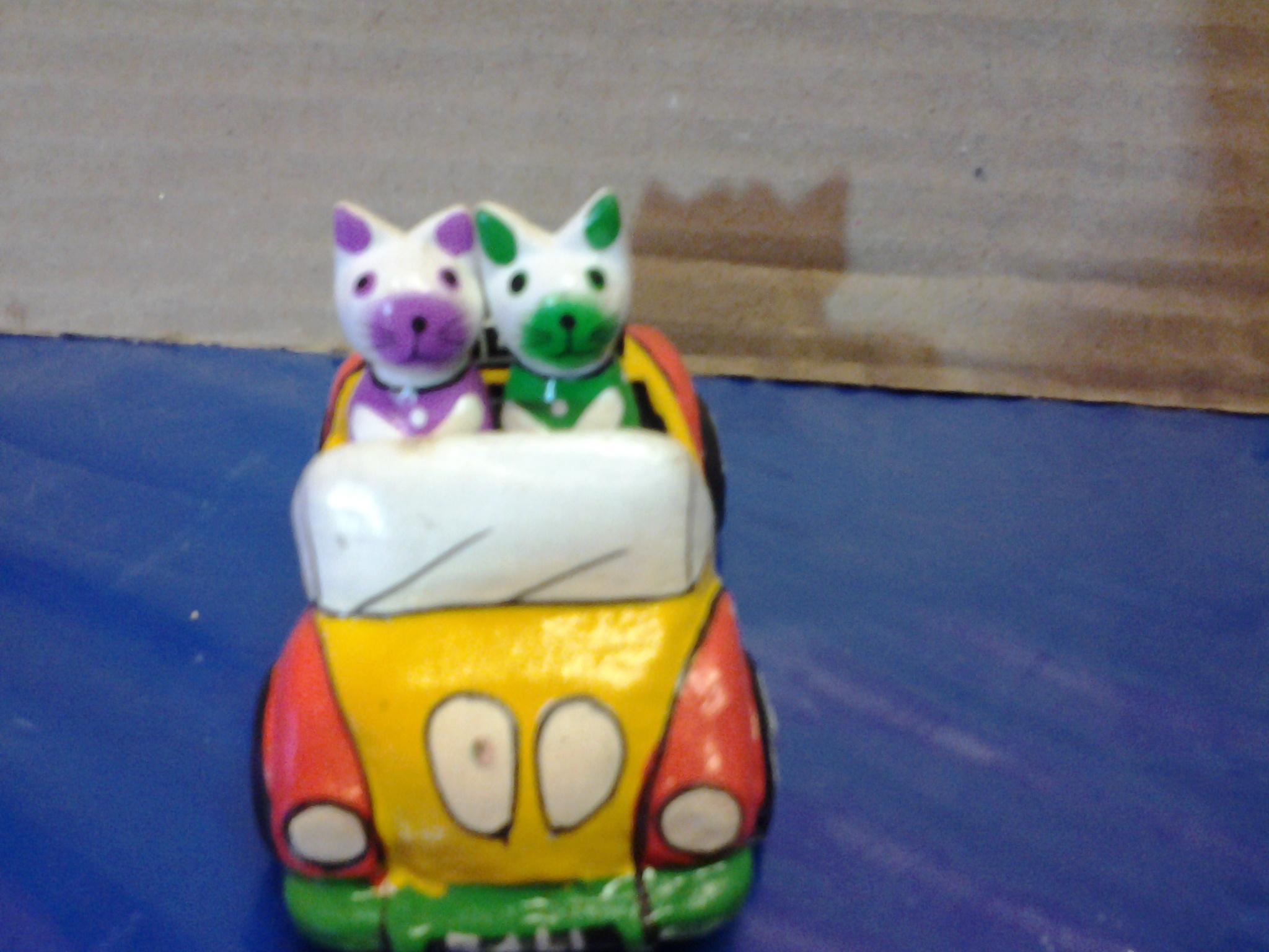 แมวนั่งรถ
