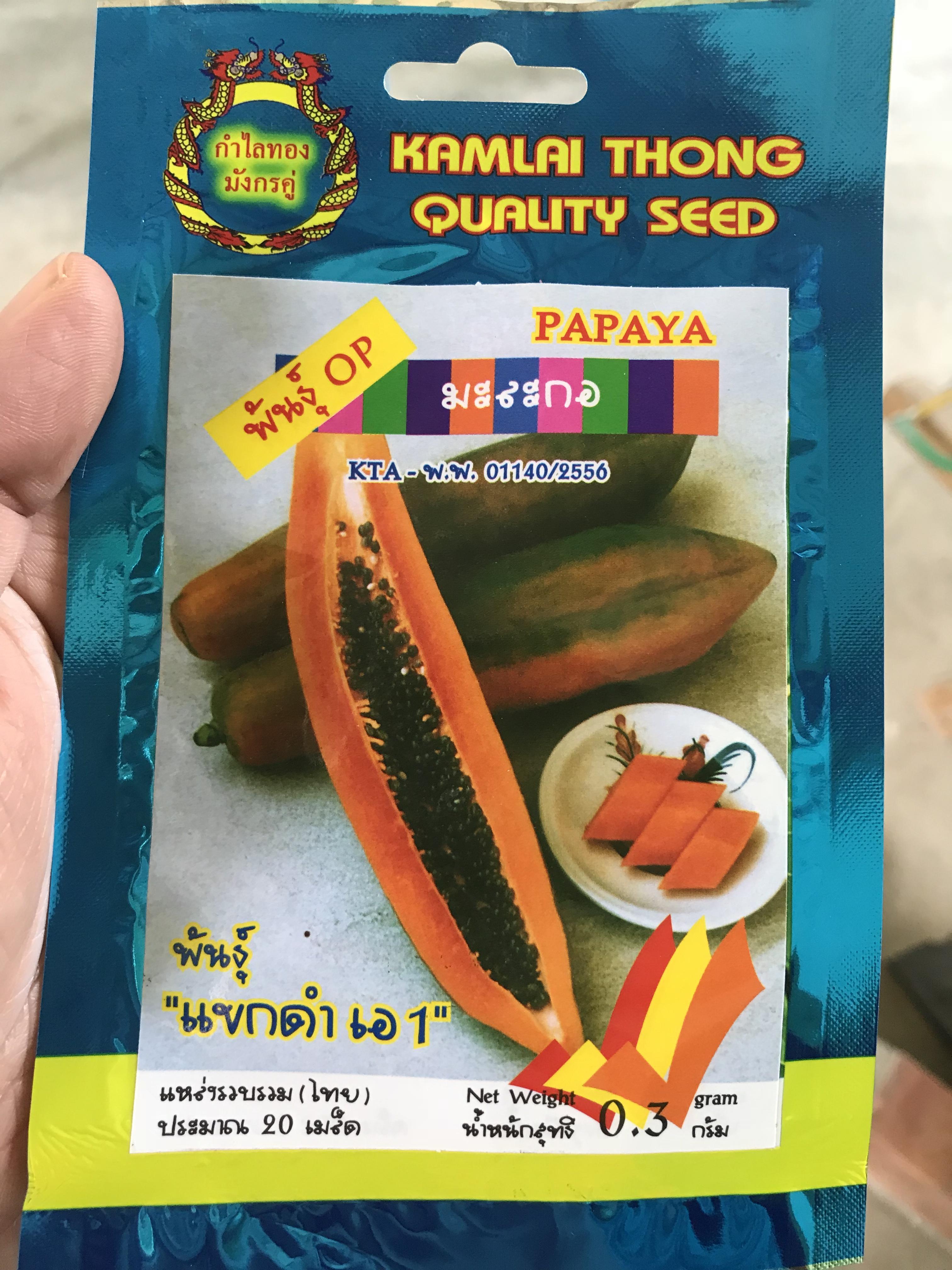 มะละกอแขกดำ A 20 เมล็ด
