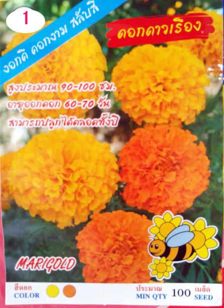 ดาวเรือง ดอกเล็ก (100เมล็ด)