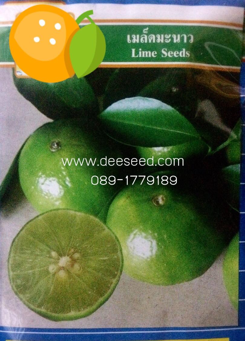 มะนาว(15-20 เมล็ด)