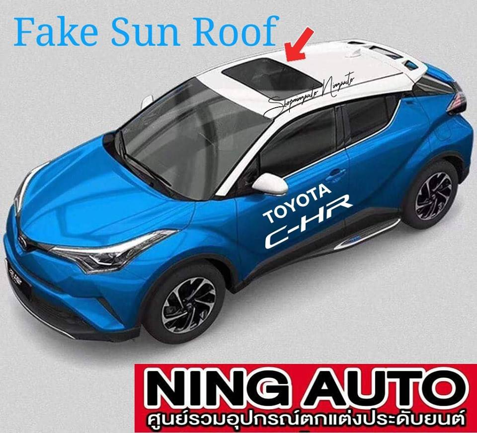 Fake Sunroof Panel