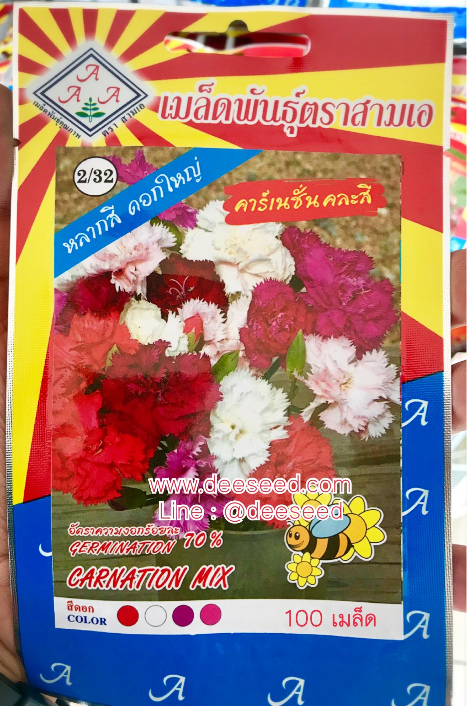 ดอกคาร์เนชั่น คละสี carnation mix 100เมล็ด