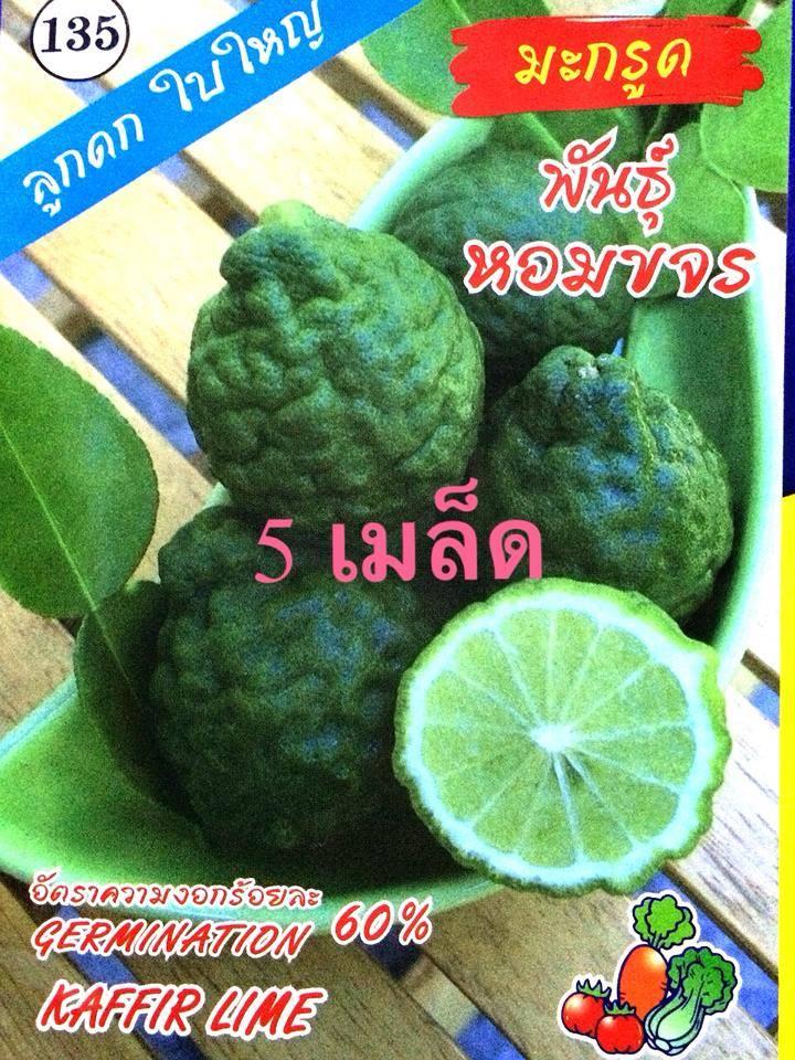 มะกรูด(5เมล็ด)