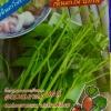 ผักบุ้งเย็นตาโฟ(ซองเล็ก) 10กรัม(150เมล็ด)