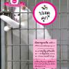 DVD พังประตูคุก (เข้มระดับ2) ซีรีย์ชุดที่ 2/5