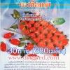มะเขือเทศทับทิม (ราชินี ) 200 เมล็ด