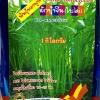ผักบุ้งใบไผ่(1 กก.) สามารถปลูกกินต้นอ่อนได้
