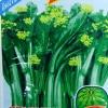 กวางตุ้งดอกฮ่องกง(ต้นอวบใหญ่) 10กรัม(3500เมล็ด)