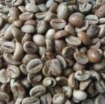 สารกาแฟโรบัสต้า เกรด A