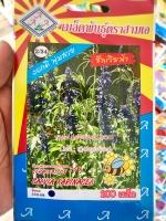 ดอกซัลเวียฟ้า salvia farinacea 200เมล็ด