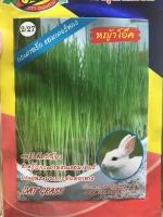 หญ้าโอ๊ค