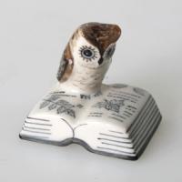 นกฮูก Owl
