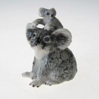 หมีโคอาล่า Koala