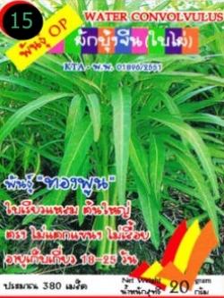 เมล็ดพันธุ์ผักบุ้งจีน(ใบไผ่ ซองเล็ก)300เมล็ด