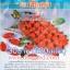 มะเขือเทศทับทิมแดง (ราชินี ) 280 เมล็ด thumbnail 1