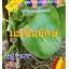 เมล็ดพันธุ์ มะเขือยักษ์(เท่าลูกมะพร้าว) 40เมล็ด thumbnail 1