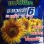 ทานตะวันดอกใหญ่(50เมล็ด) thumbnail 1