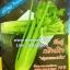 เซเลอรี่ Celery thumbnail 1