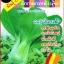 เมล็ดพันธุ์กวางตุ้งฮ่องเต้ ประมาณ 5000 เมล็ด thumbnail 1