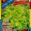 ผักกาดหอม(สลัดใบหยิก) 2700เมล็ด thumbnail 1