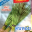 เมล็ดพันธุ์ต้นหอม 1.5กรัม(650เมล็ด) thumbnail 1