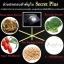 Secret Plus ซีเครท พลัส กล่องดำ ขาว อึ๋ม สะบึม ฟิต thumbnail 4