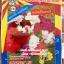 ดอกคาร์เนชั่น คละสี carnation mix 100เมล็ด thumbnail 1