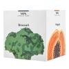 A1-041 Midori Healthy Greens Complete Superfood Drink (10 ซอง) Midori Healthy Greens มิโดริ เฮลท์ตี้ กรีน ดีท็อกซ์ ล้างสารพิษ