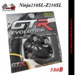 ตีนเป็ด Ninja250sl -Z250sl #สีดำ (GTR)