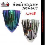 ชิวแต่งNinja 250 ปี2009-2012
