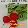 แรดิส Radish (50 เมล็ด)