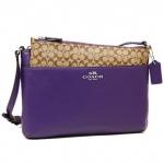 สินค้าพร้อมส่ง : กระเป๋า COACH F52206 Darcy Leather Swingpack/Crossbody