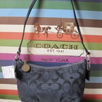 กระเป๋า Coach 44747 Signature Pleated Swingpack SLCBK