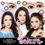 ♥ ♥ รุ่น Sakura (dream) น้ำตาล เทา (Eff 14.5 Dia 14.0) ♥ ♥