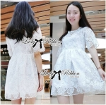 Lady Grace Pretty Floral Embroidered Sheer Tulle Dress in White