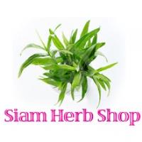 Siam Herb Shop ศูนย์รวมผลิตภัณฑ์สมุนไพรคุณภาพจากทั่วประเทศ