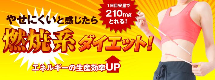 วิตามินDHC Alpha Lipo เผาผลาญน้ำตาลและไขมัน ลดความอ้วน