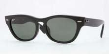 แว่นกันแดดเรแบน RayBan RB4169F