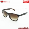 RayBan RB4202F 6073/13 ANDY